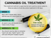 Cannabis Oil (RSO) Dosing for Beginners