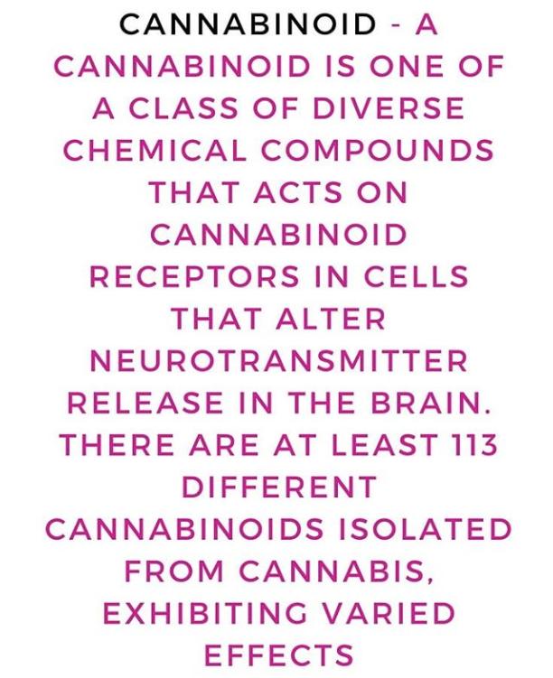 Cannabinoids and Healing