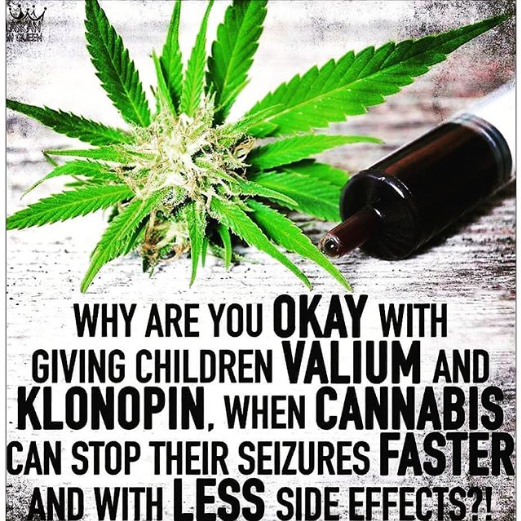 Parents!!! Cannabis is Safer!