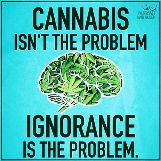 Cannabis Isnt the Problem, Ignorance is the Problem