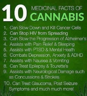 10 Medicinal Facts About Cannabis