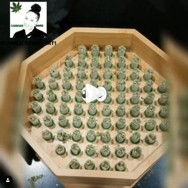76 Joints Rolled at Once! Buddies Bump Box